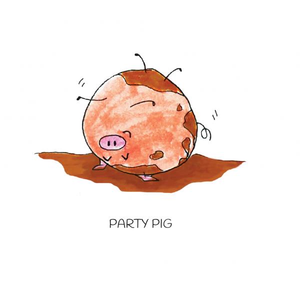 wenskaart geometrisch varken - Party Pig